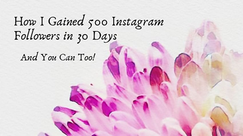 How-I-Gained-500-Instagram-Followers-in-30-Days
